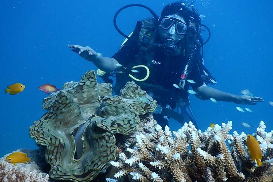 Tuna Bay Diving Course Package  5 Days 4 Nights