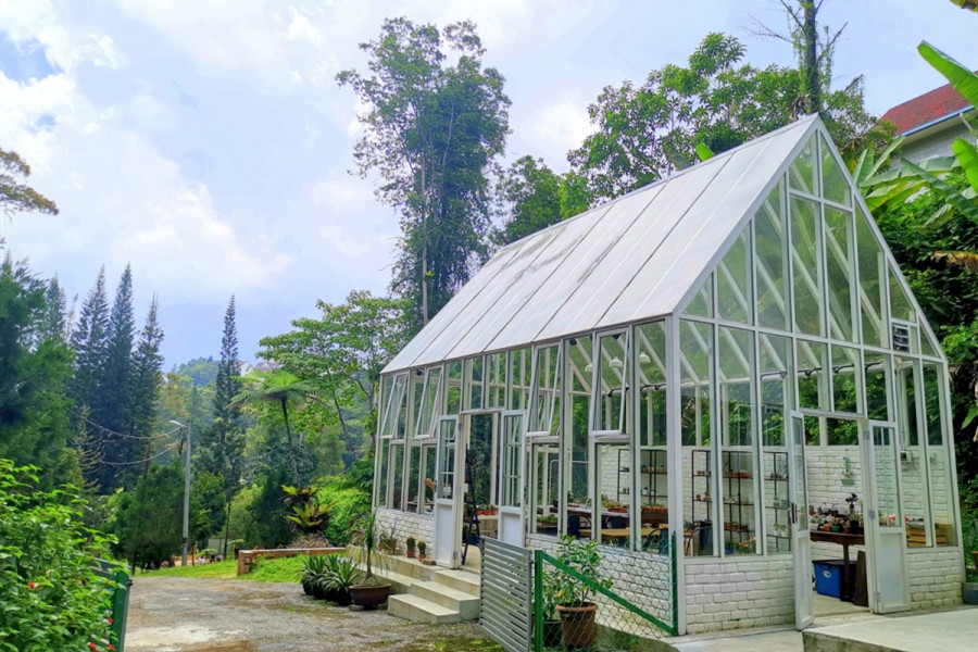 Fraser Hill Day Tour from Kuala Lumpur | Escape from  Kuala Lumpur