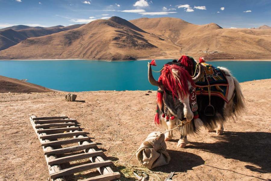 Holidays to Tibet Bhutan and Nepal 16 days 15 nights